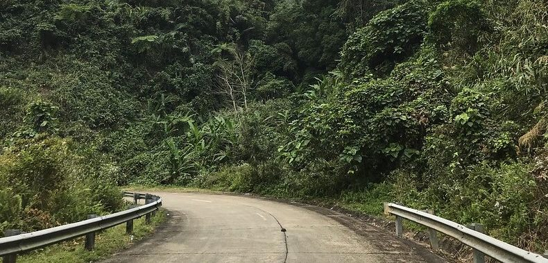 Part II: Welcome to the Jungle … on Motorbikes!