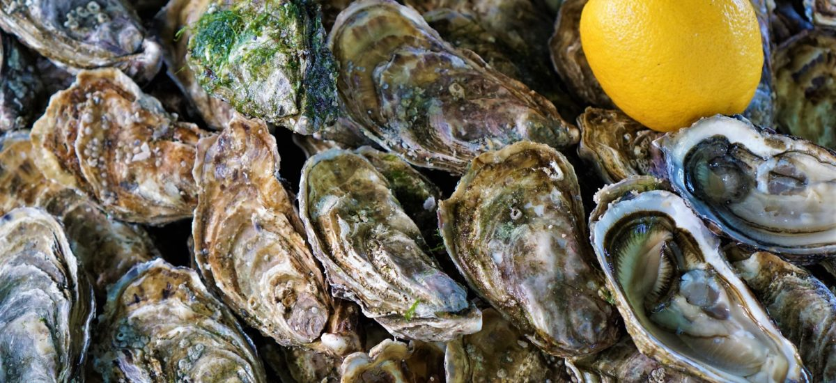 Oysters, Omelettes, and Baskets   – The Homage to Small Town France